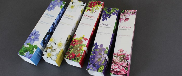 garden-galleries-clematis-packaging