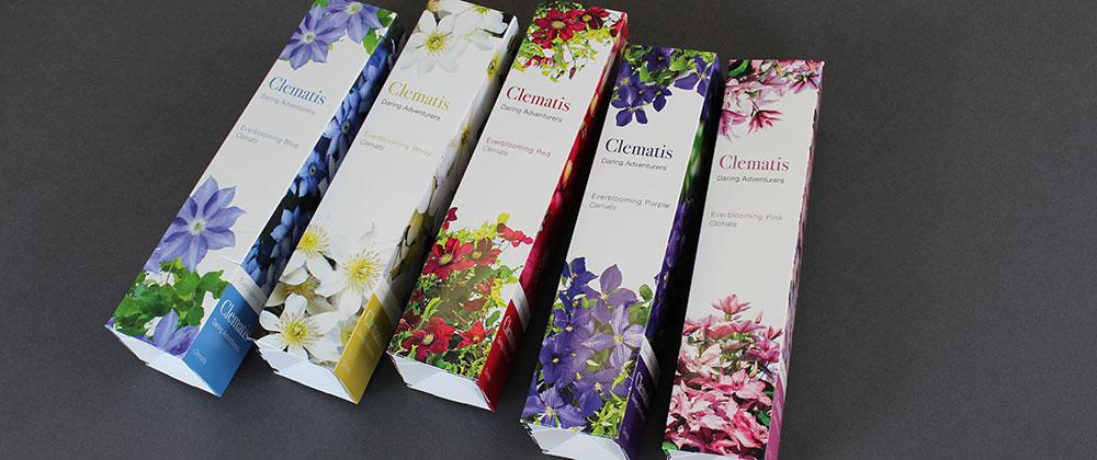 garden-galleries-clematis-packaging