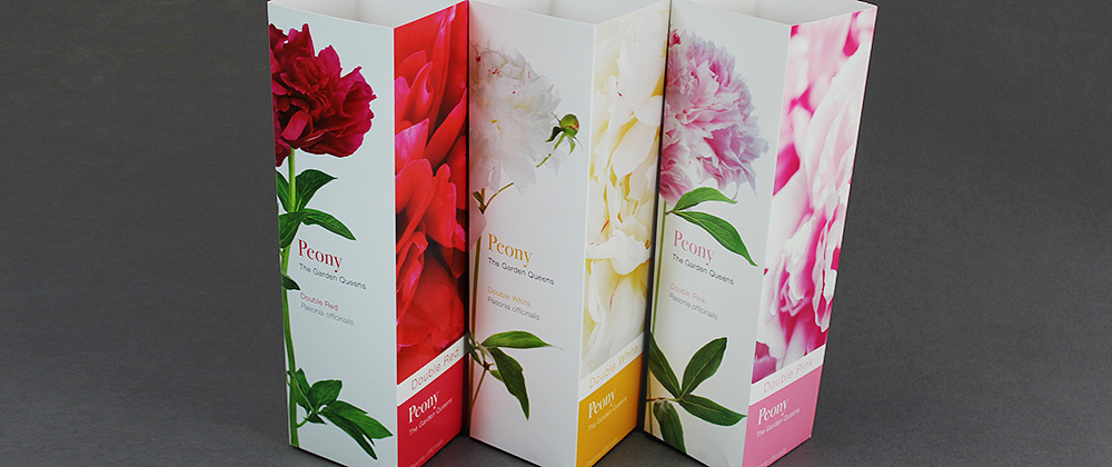 garden galleries peony packaging