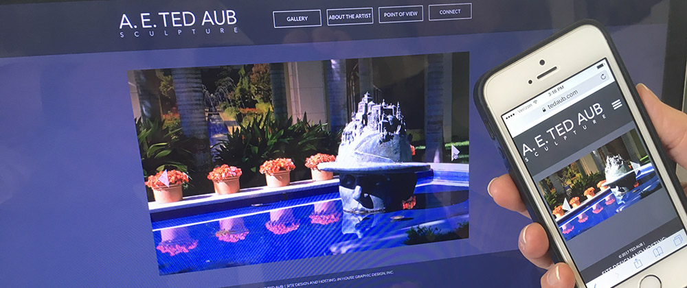 ted aub website homepage